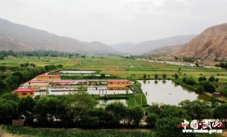 甘肃武山县稳步推进农村土地流转经营管理工作