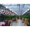 山东生态餐厅建设公司,绿色温室餐厅多少钱一平米