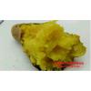 北京553   2017年 烧烤型脱毒红薯苗预订开始了