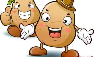 土豆翻身做主食!带你重新认识神奇的土豆