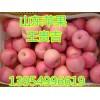 山东苹果批发藤木苹果山东嘎啦苹果产地上市了