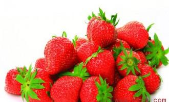 海南每个月的水果上市时间表_海南热带水果介绍