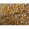 大盛原料求购高粱大米玉米小麦豆薯类原料