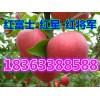山东红富士苹果批发基地市场行情 精品苹果市场价格走势