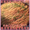 东北快手酱香饼培训哪里教于记酱香饼正宗于记酱香饼培训