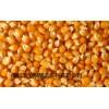 求购高粱大米糯米碎米小麦玉米等原料
