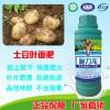 进口施力龙土豆专用叶面肥
