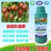 进口施力龙枣树专用叶面肥