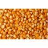 求购玉米油糠米糠麸皮次粉等饲料原料