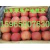苹果批发 山东红富士苹果价格便宜了