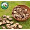 昌盛宝菇冬菇深山乐投剪脚优质脱水香菇干厂家批发